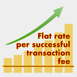 Flat rate per successful transaction fee